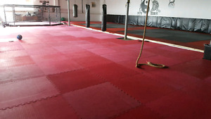 Gym rental opportunity! Warehouse fully matted personal trainers