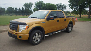 2009 Ford F-150 SuperCrew FX4 4 X 4 Pickup Truck