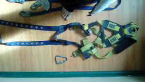 2 5 point harness,  3 lanyards,  roof ancor 100$