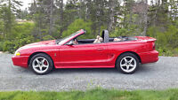 1996 Ford Mustang Convertible. Never Winter driven! New Price!!