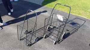Paper route carrier carts