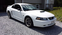 2002 Ford Mustang GT $7000obo