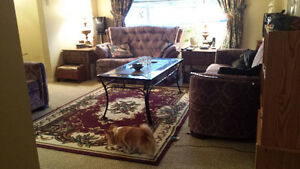 One large bedroom available in cozy pet friendly townhouse