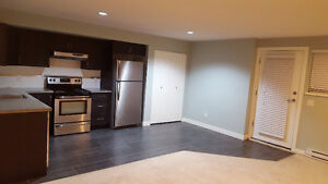 2 bedrooms new home basement suite for rent