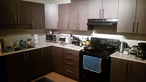 Roommate wanted for new, fully furnished NE condo