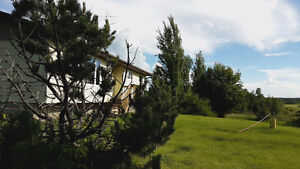 PRICED TO SELL. house on 40 acres 10 min from Meadow Lake