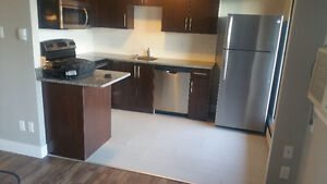 1 bedroom apartment Beltline (parking included) 10th Ave SW