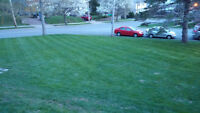 LAWN CARE, FIRST MOW IS FREE!