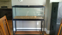 90 Gallon Fish tank w/ Stand For Sale