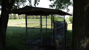 Dog Kennel 6 by 10 by 6 high