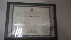framed Canadian Charter of Rights and Freedoms
