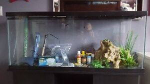 55 Gallon Fish Tank with Stand and all you need for Setup!
