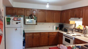 Great investment opportunity student rental. Kitchener / Waterloo Kitchener Area image 4
