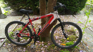 """Junior mountain bike for sale"