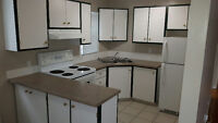 Centrally located beautiful 1 BR **NEWLY RENOVATED**