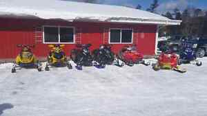 Snnowmobile and Small engine repair