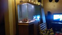 Sell 55 gallon tank
