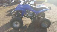 quad 250 cc