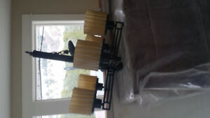 Celing Fan and Dining Room Fixture