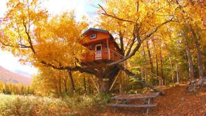 Location d'une maison dans les arbres au Diable Vert à Sutton