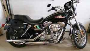 Harley Dyna FXD ONLY 12,600KM