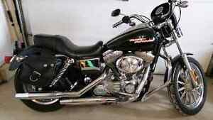 2004 Harley Dyna FXD