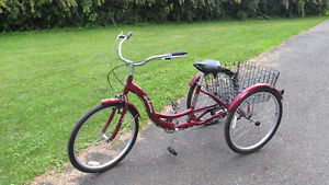 Tricycle confortable Schwinn Meridian, 26 po