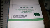 THE TREE GUY TRIMMING AND REMOVAL SERVICE HAMILTON