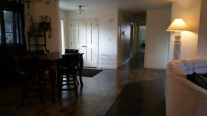 Large Room in Beautiful House across from Campus