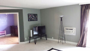 newly renovated 2 bedroom condo for rent