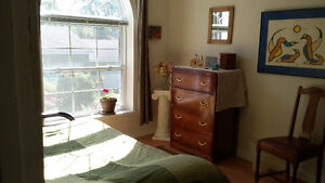 Large bedroom plus den in quiet, beautiful shared house