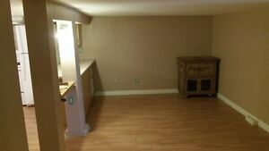2 bedroom apprt for rent month to month
