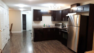 Large One Bedroom Basement Timberlea by Timhorton