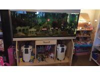 Aquarium 450l ...