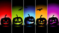 Halloween P.A. DAY CAMP FRI. OCT 28th! BUY 1 GET 1 FREE