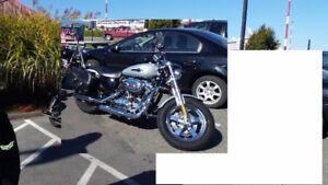 2011 Custom Harley Davidson