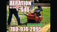 Spring clean up / aeration