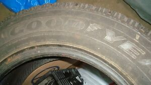 Goodyear Nordic Directional Winter Tire.