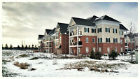 2 Bedroom West End Luxury Show Room Condo for sale - $211,990