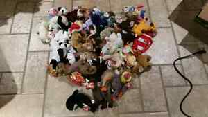Massive Lot of TY Beanie Babies and Buddies Windsor Region Ontario image 2