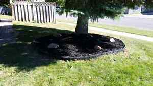 P.J.G lawn care Now booking for the summer Sarnia Sarnia Area image 5