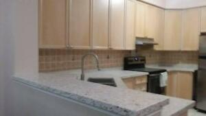Quartz, Granite countertop, bartop, tabletop, vanitiestop promotion in Ontario (free sink)