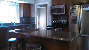 free Estimates for painting and drywall repairs Windsor Region Ontario image 4