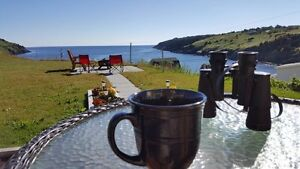 Historic Seaside Cottage - 10 minutes from St. John's