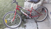 Red Super Cycle  mountain bike.