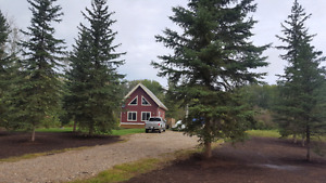 Cabin at plamondon minutes to whitesands and lac la biche lake