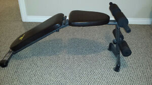Adjustable Exercise Bench (Apex)
