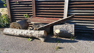 Large logs for wood working or tables