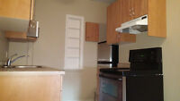 Immediate Availability. Bachelor downtown! Recently Reno'd