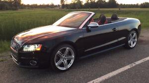 Beautiful 2010 Audi S5 Convertible